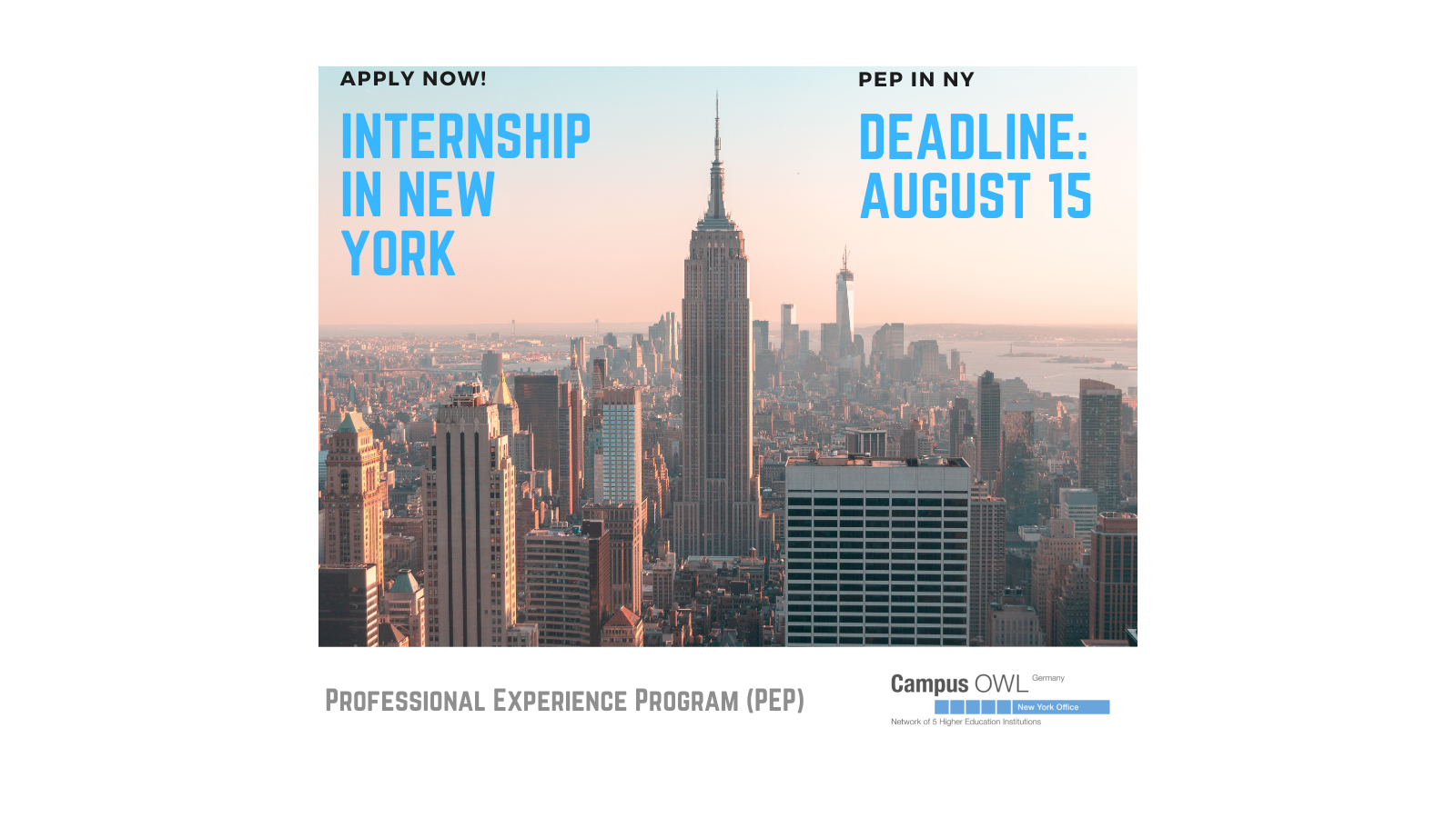 PEP Professional Experience Program Apply Now